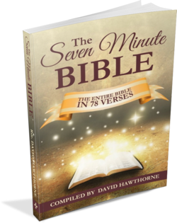The 7 Minute Bible